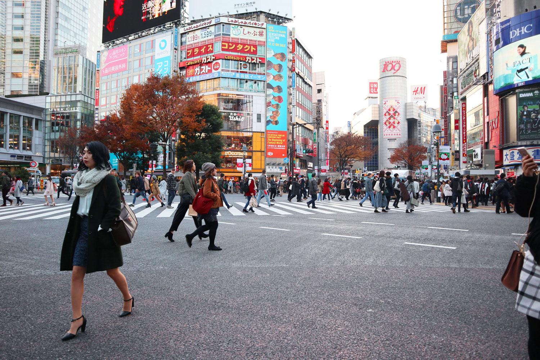 japan_book_tokyo_shibuya_crossing